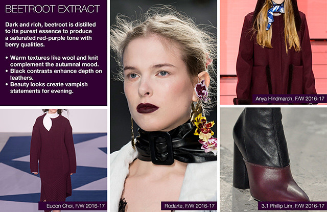#Trendstop on #WeConnectFashion, Key Women's Catwalk Color FW 16/17: Beetroot Extract