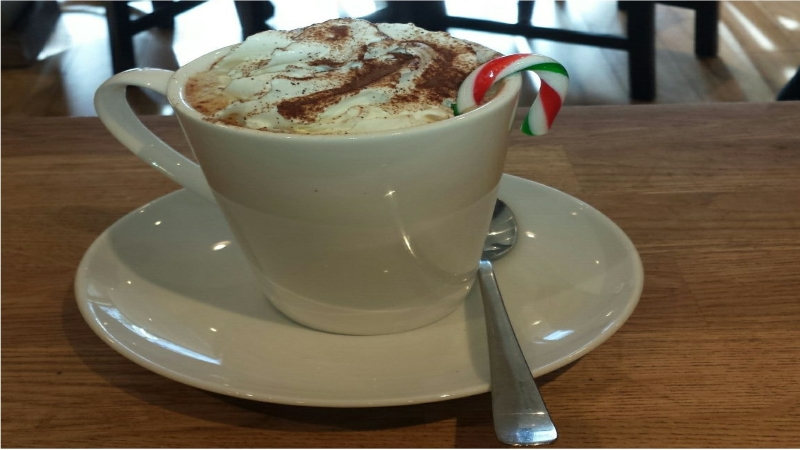 Mojo Coffee Company