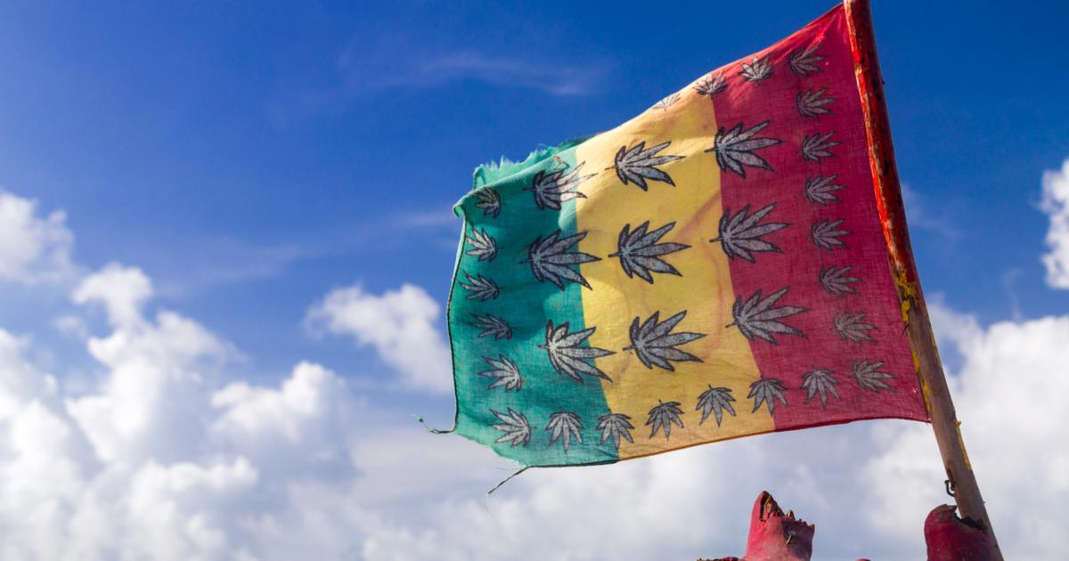 Laboratorium ds. Badań nad Marihuaną – postulat parlamentarzystki z Jamajki