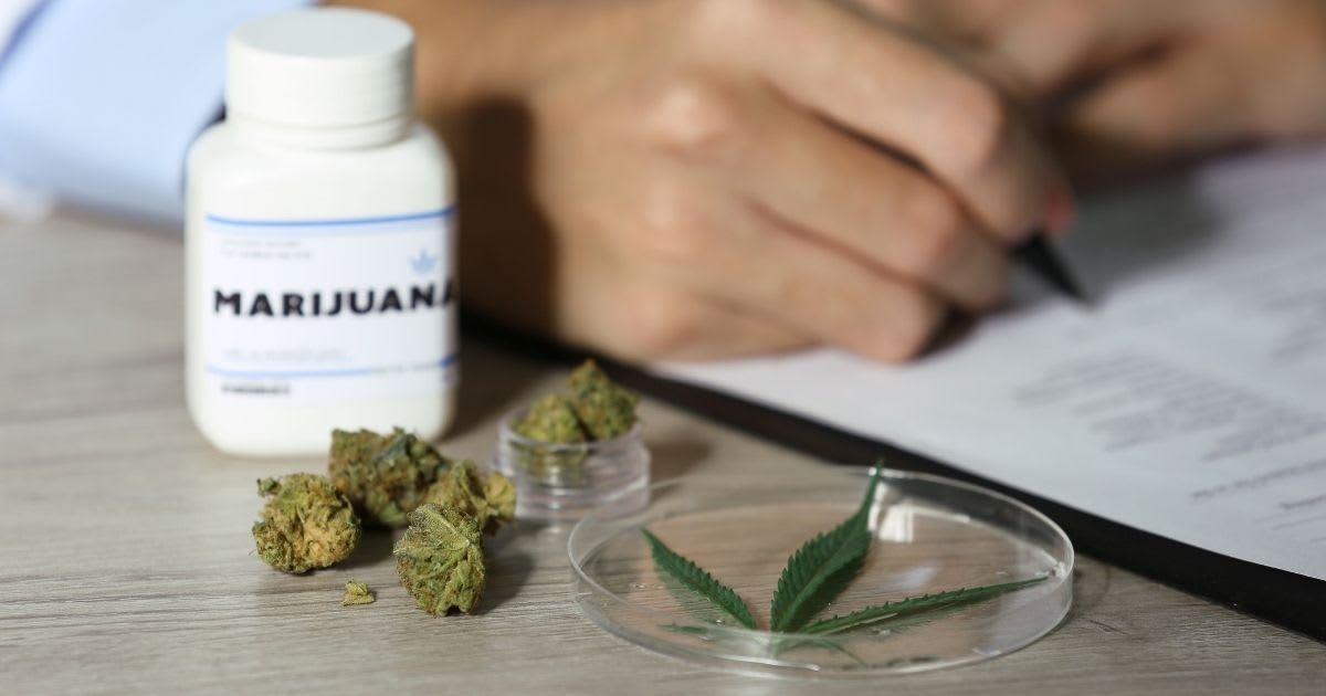 Jak uzyskać receptę na medyczną marihuanę? Praktyczne porady