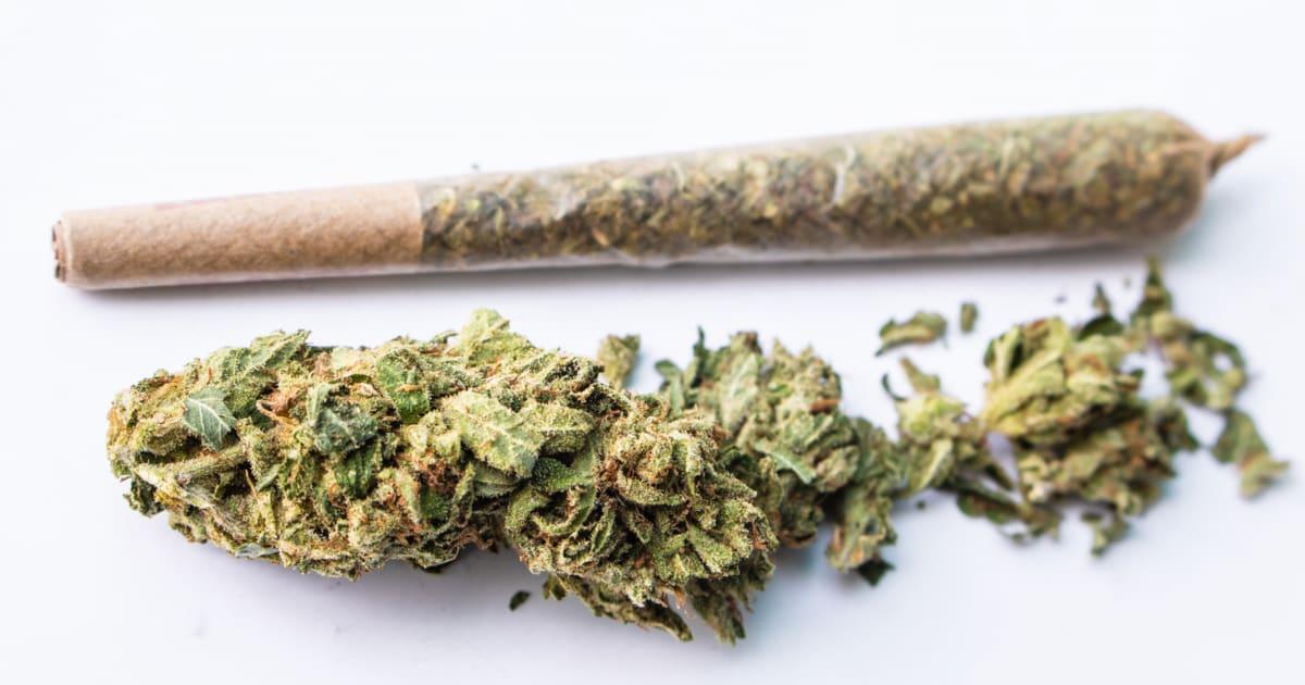Medyczne jointy od firmy Aurora Cannabis