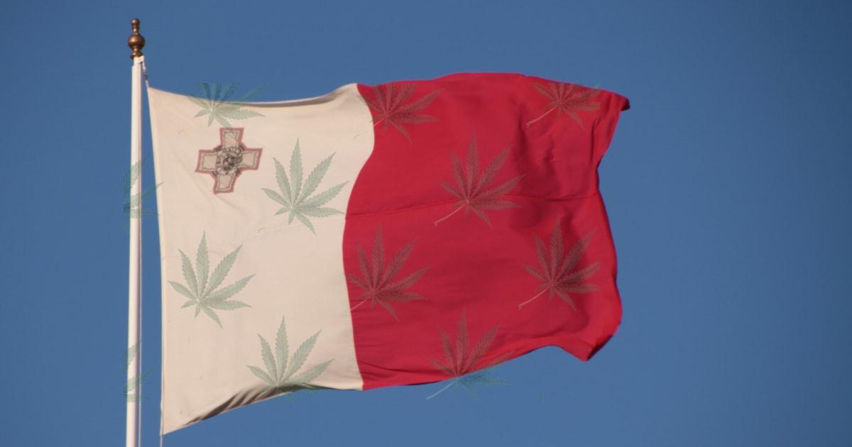 Malta zezwala na  uprawę i posiadanie marihuany oraz otwarcie klubów konopnych