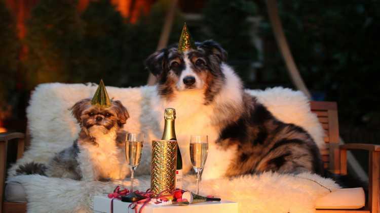 Capodanno in famiglia