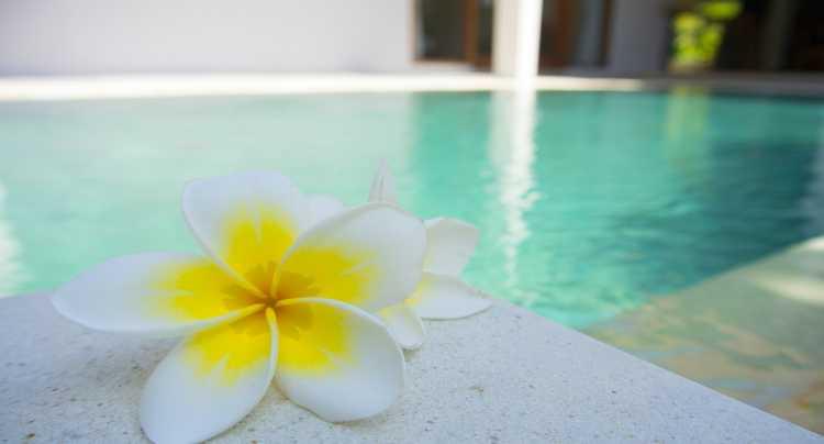 La tranquillità di una piscina termale