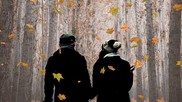Parque Natural en otoño