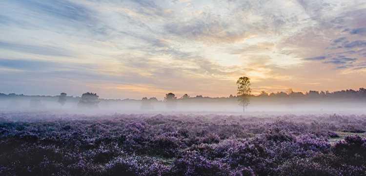 Uden, Nederland