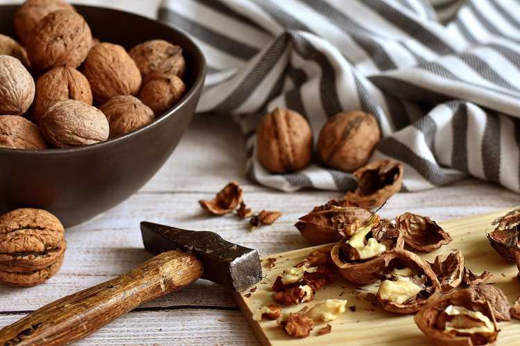 La noix, spécialité du Périgord