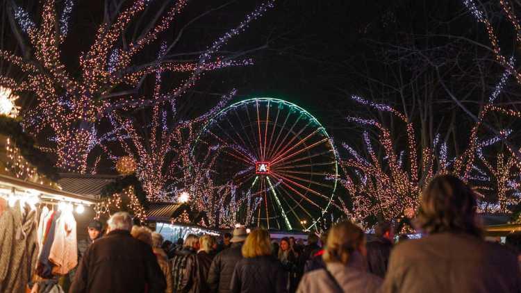 Reuzenrad, Kerstmis, Antwerpen