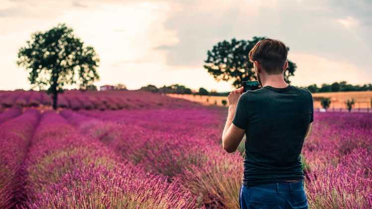 Marcher dans les champs