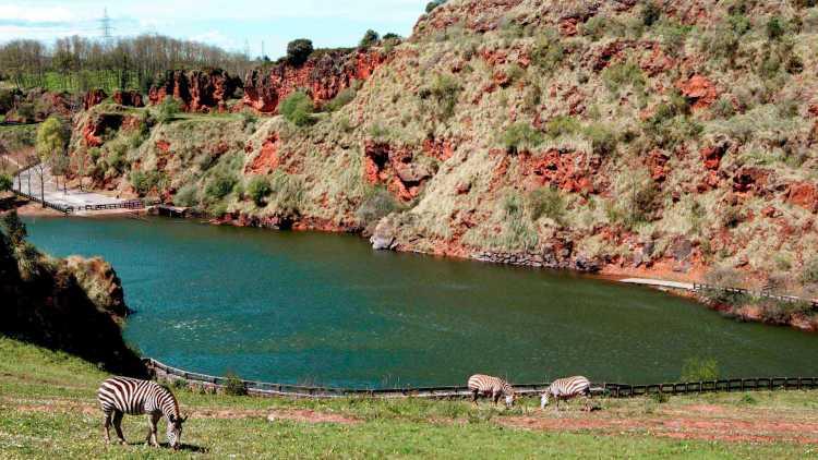 Parque de la Naturaleza Cabárceno