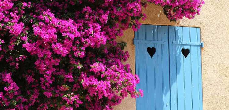 Petite maison à Porquerolles
