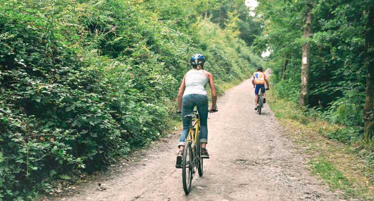 Mountainbike in Ardennes