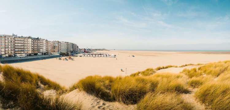 Strand aan de Vlaamse kust