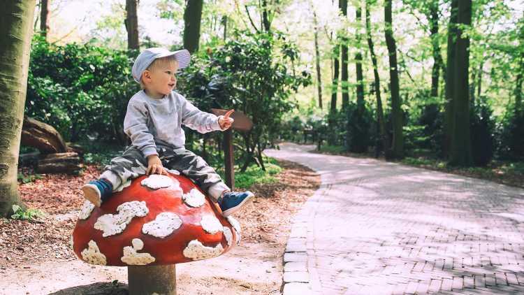 Park Efteling weekendje
