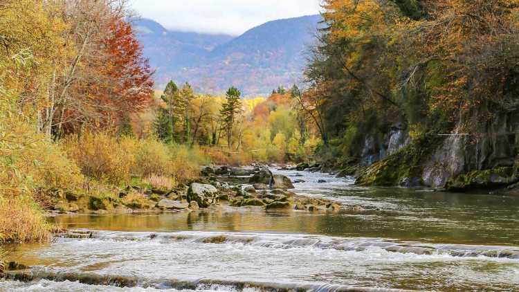 Rivière Fier