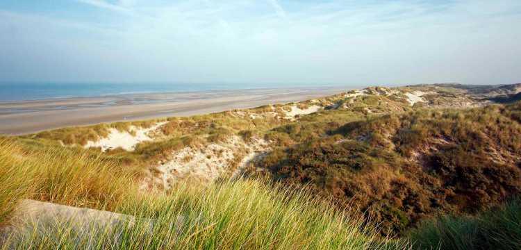Entre falaise et dunes