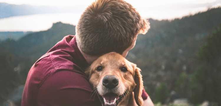 Tu mascota se lo merece