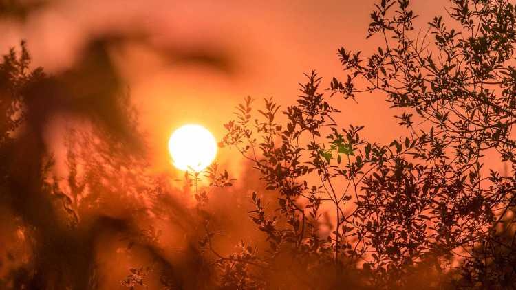 Profitez du soleil