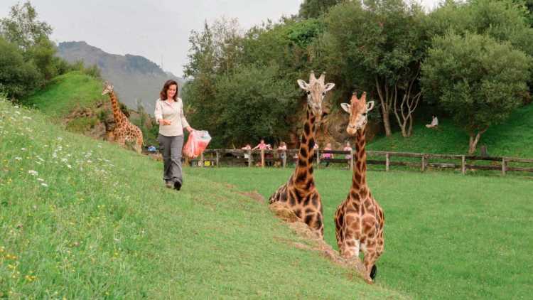 Zoologico di Cabárceno