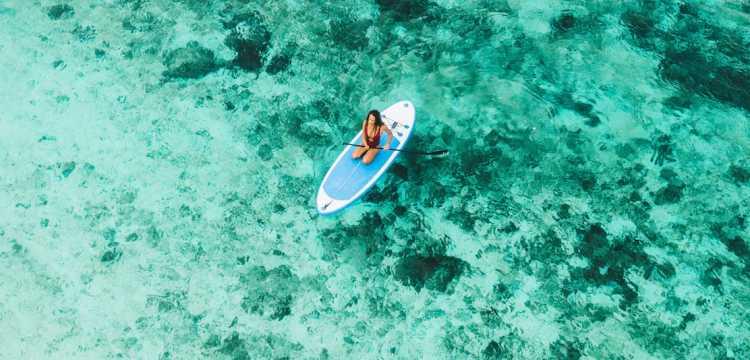 Activité paddle
