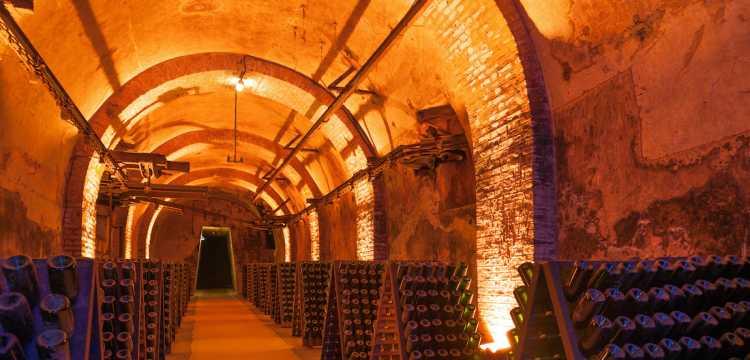 Visite de cave en Champagne