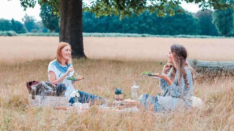 Vete de pícnic a Doñana
