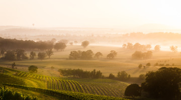 Hunter Valley Hotels & Accommodation