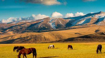 Goedkope Vluchten naar Almaty