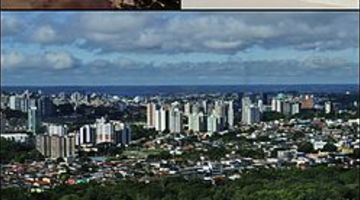 Voos baratos para Manaus