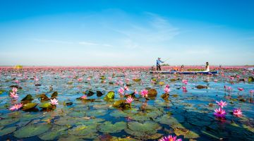Cheap Flights to Udon Thani