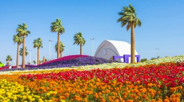 Cheap Flights to Yanbu