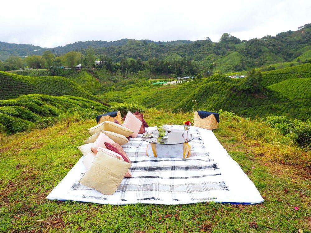 Singtom Tea Retreat, Darjeeling