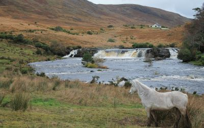 The Proud, Rugged Landscapes of Ireland Took My Breath Away: Traveling Around the Irish Countryside in a Bus