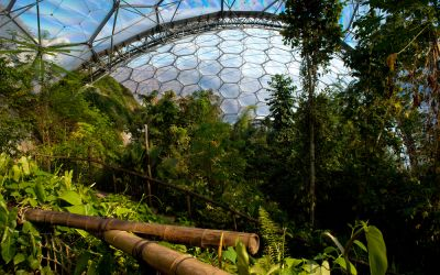 The Spectacular Tropical Rainforest in England No One Knows About: Inside The Eden Project