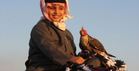 Qatar Falcon_young_boy