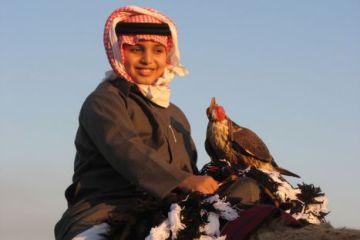 Qatar Falcon_young_boy