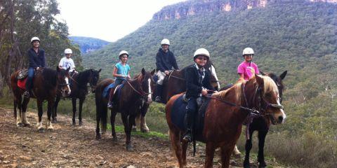 Horses family 750