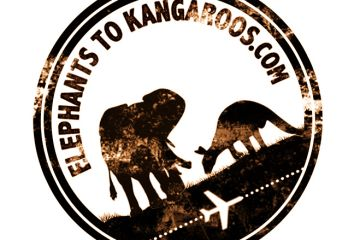 elephants to kangaroos
