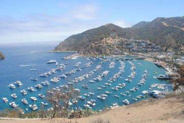 Catalina Avalon Bay