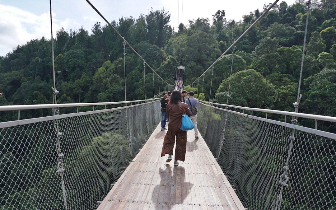 Melihat Jembatan Gantung Terpanjang Se Indonesia Di Situ