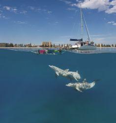 Six thrilling Australian family adventures