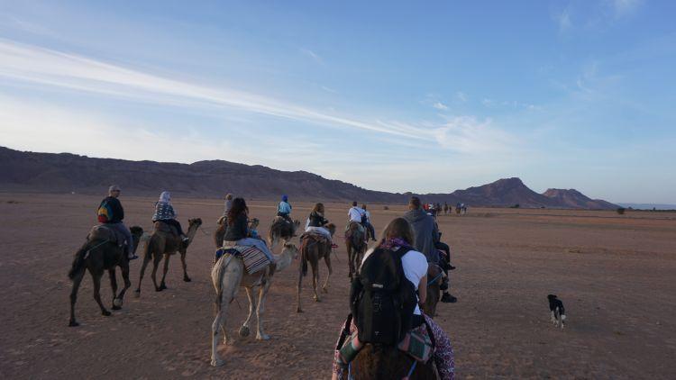 Teman-teman seperjalanan ketika di Sahara. (Foto: Ali Lim)