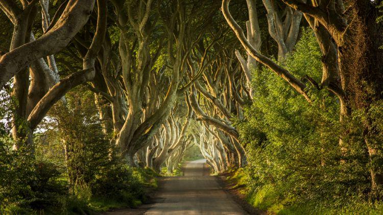 Pemandangan Magis di Lokasi Syuting Game of Thrones