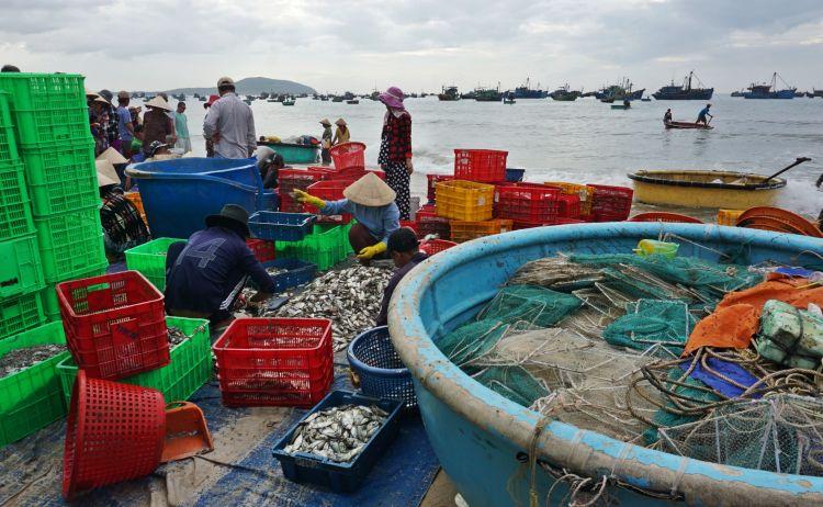 7 Hal Seru yang Wajib Dilakukan di Mui Ne_Fishing Village Mui Ne