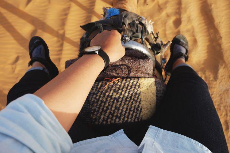 Ketika di atas unta Gurun Sahara