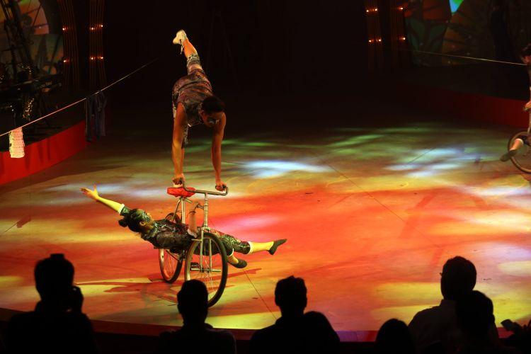 The Great 50 Show: Pertunjukan Sirkus Legendaris Indonesia