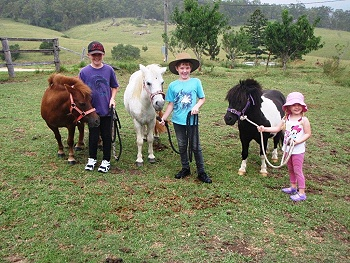 حياة المزارع - الصورة من موقع lillydale