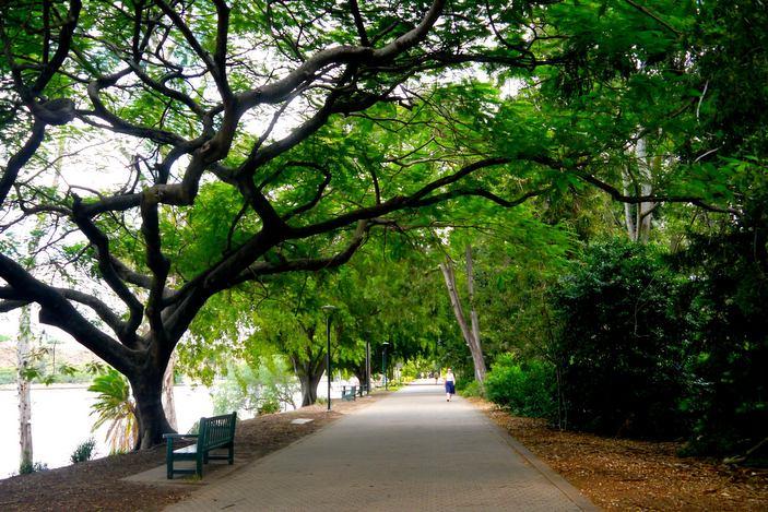 حدائق بريزبن النباتية - الصورة من موقع brisbanekids