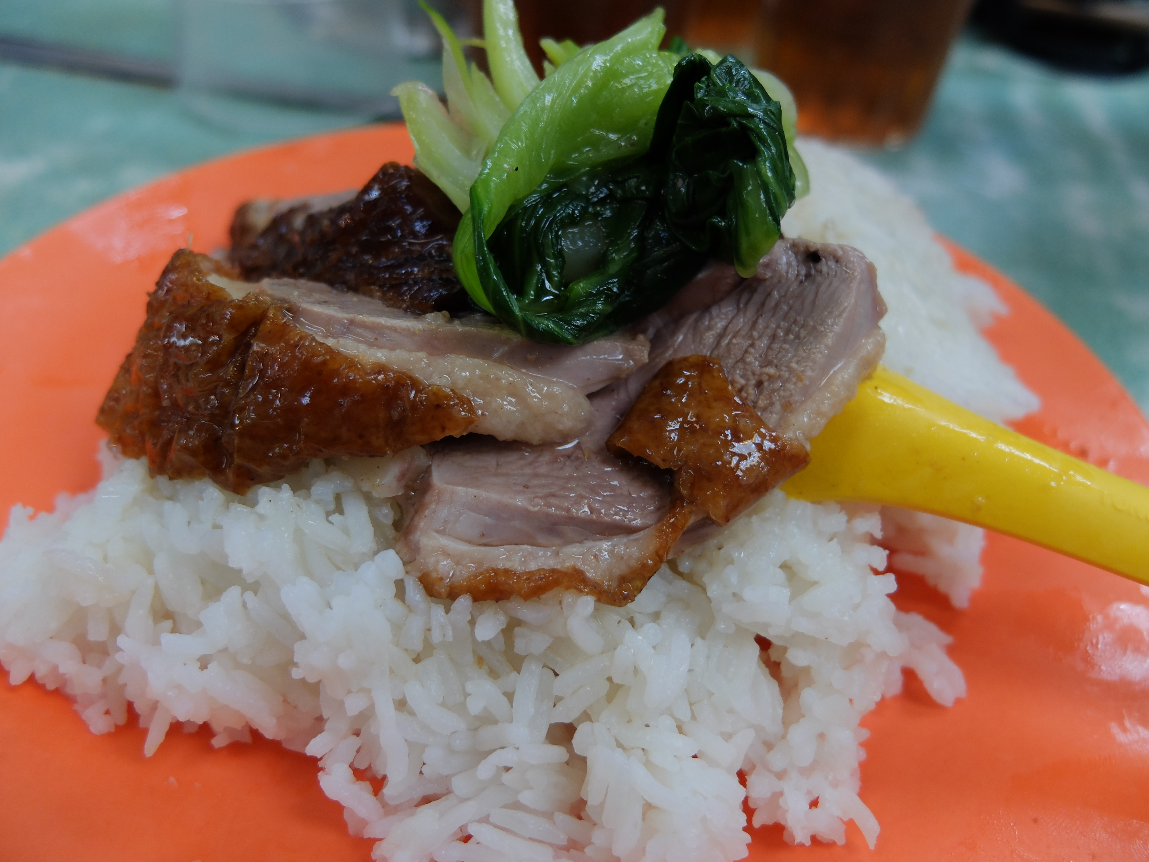 Wai_Kee_Curry_-_Roast_Duck_with_Rice_xkpig1