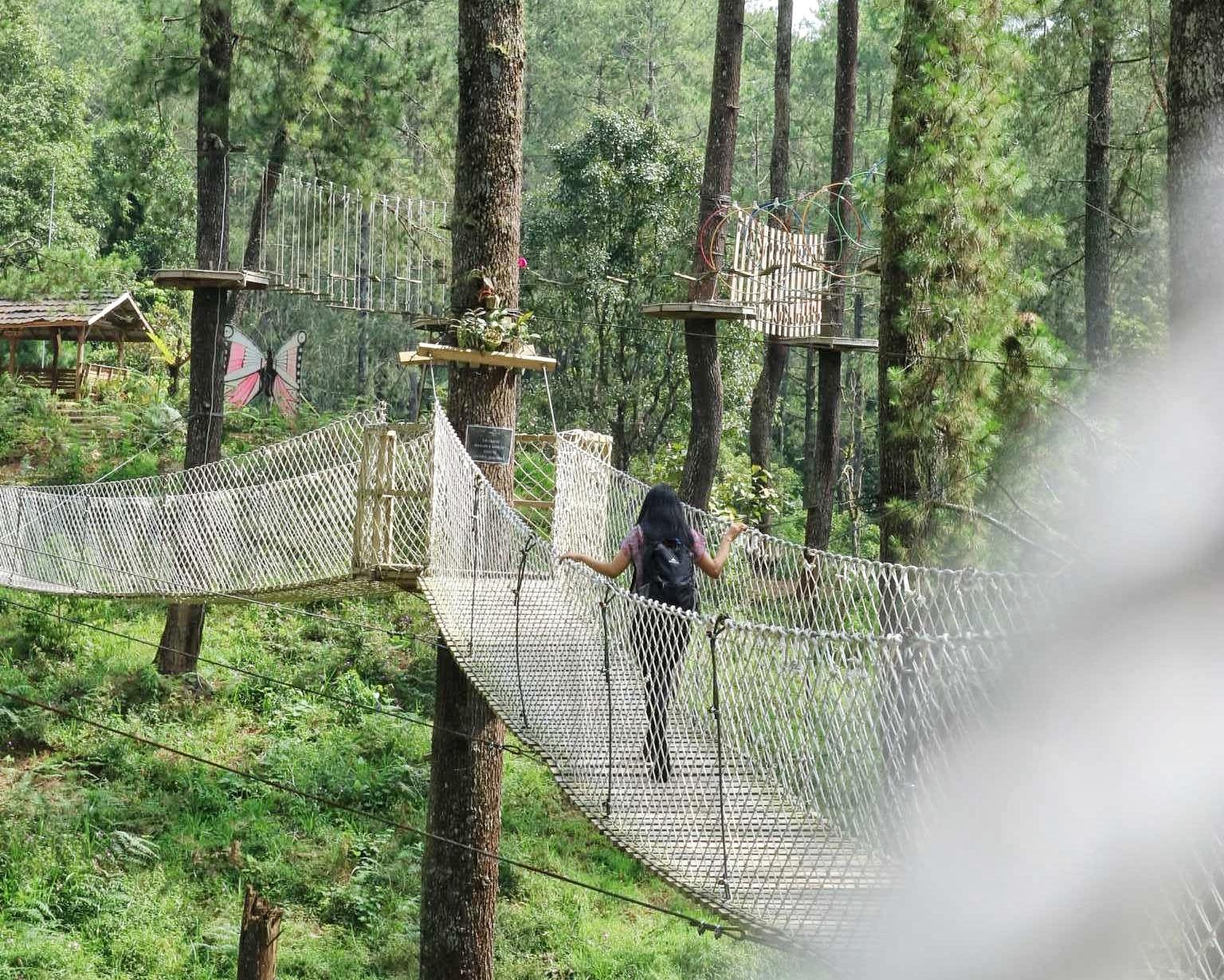 Bertualang di Hutan Pinus Hits Orchid Forest Cikole - #TravelON by on